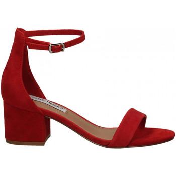 Čevlji  Ženske Sandali & Odprti čevlji Steve Madden IRENEE SUEDE red