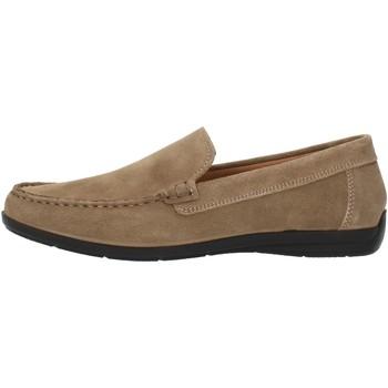 Čevlji  Moški Mokasini Imac 500711 Beige