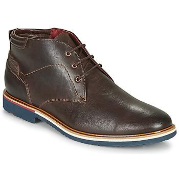 Čevlji  Moški Polškornji Lloyd FABIO Kostanjeva