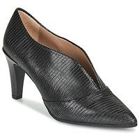 Čevlji  Ženske Nizki škornji Hispanitas BELEN-7 Črna