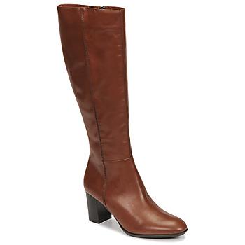 Čevlji  Ženske Mestni škornji    Fericelli NAVAROIS Kamel