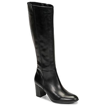 Čevlji  Ženske Mestni škornji    Fericelli NAVAROIS Črna