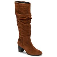 Čevlji  Ženske Mestni škornji    Fericelli NEIGNET Kamel