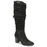 Čevlji  Ženske Mestni škornji    Fericelli NEIGNET Črna