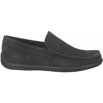 Čevlji  Moški Mokasini Frau CASTOROpunz jeans