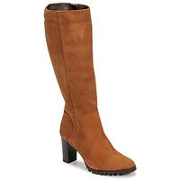 Čevlji  Ženske Mestni škornji    Betty London NOEME Kamel