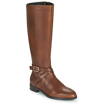 Čevlji  Ženske Mestni škornji    Betty London NILOU Kamel