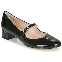 Čevlji  Ženske Salonarji Betty London NALAURA Črna