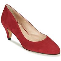 Čevlji  Ženske Salonarji Betty London NESLIE Rdeča