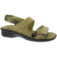 Čevlji  Ženske Sandali & Odprti čevlji Calzaturificio Loren LOM2833ta tortora