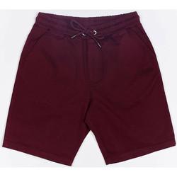 Oblačila Moški Kratke hlače & Bermuda Wrung Short  Shark rouge bordeaux