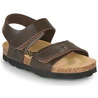 Čevlji  Dečki Sandali & Odprti čevlji Citrouille et Compagnie BELLI JOE Kostanjeva
