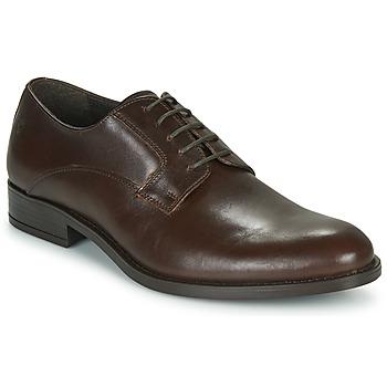 Čevlji  Moški Čevlji Derby Carlington NOCOLA Kostanjeva