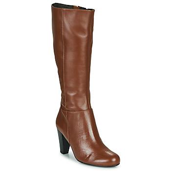 Čevlji  Ženske Mestni škornji    So Size ARDEIN Kostanjeva