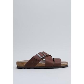 Čevlji  Moški Natikači Senses & Shoes  Kostanjeva