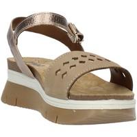 Čevlji  Ženske Sandali & Odprti čevlji Imac 509190 Beige