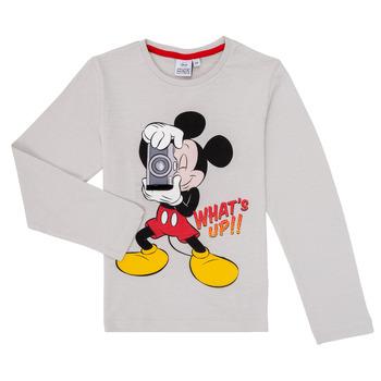 Oblačila Dečki Majice z dolgimi rokavi TEAM HEROES  MICKEY Siva