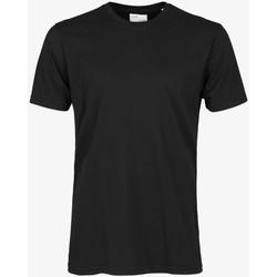 Oblačila Moški Majice s kratkimi rokavi Colorful Standard CLASSIC ORGANIC TEE deep-black-nero