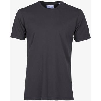 Oblačila Moški Majice s kratkimi rokavi Colorful Standard CLASSIC ORGANIC TEE lava-grey-grigio