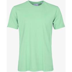 Oblačila Moški Majice s kratkimi rokavi Colorful Standard CLASSIC ORGANIC TEE faded-mint