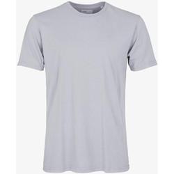 Oblačila Moški Majice s kratkimi rokavi Colorful Standard CLASSIC ORGANIC TEE limestone-grey