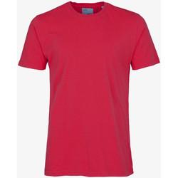 Oblačila Moški Majice s kratkimi rokavi Colorful Standard CLASSIC ORGANIC TEE scarlet-red