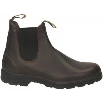 Čevlji  Moški Polškornji Blundstone 150 ANNIVERSARY BOOT auburn