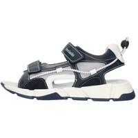 Čevlji  Dečki Sandali & Odprti čevlji NeroGiardini E033851M Blue