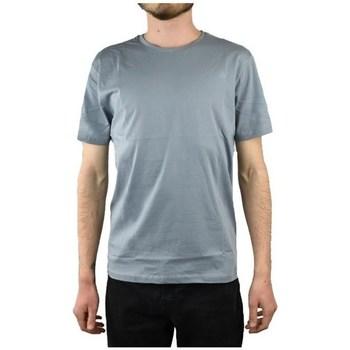 Oblačila Moški Majice s kratkimi rokavi The North Face Simple Dome Tee Siva