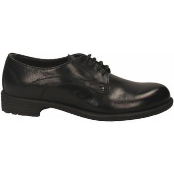 Čevlji  Ženske Čevlji Derby Franco Fedele BUFALO nero