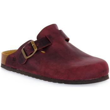 Čevlji  Cokli Bioline 1900 VINO INGRASSATO Rosso