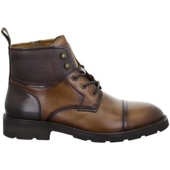 Čevlji  Moški Polškornji Salamander Modena Tan Brown Brown