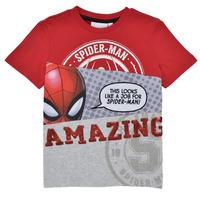 Oblačila Dečki Majice s kratkimi rokavi Desigual 21SBTK08-3005 Večbarvna