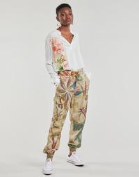 Oblačila Ženske Lahkotne hlače & Harem hlače Desigual TOUCHE Bež