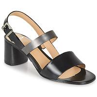 Čevlji  Ženske Sandali & Odprti čevlji Perlato 11805-JAMAICA-NOIR Črna