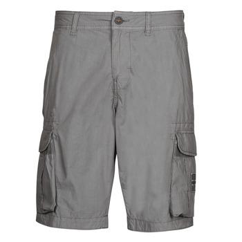 Oblačila Moški Kratke hlače & Bermuda Napapijri NORI Siva