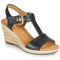 Čevlji  Ženske Sandali & Odprti čevlji Gabor 6282457 Črna