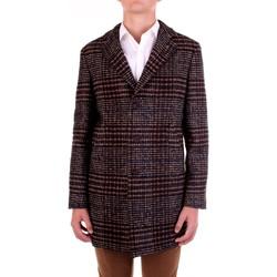 Oblačila Moški Plašči Manuel Ritz 2932C4448-203731 Marrone