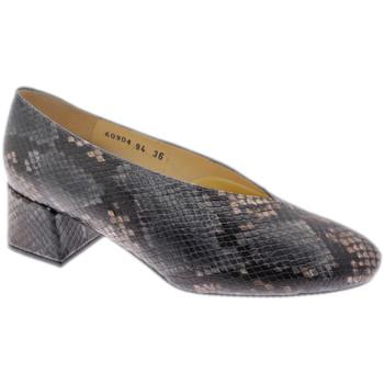 Čevlji  Ženske Salonarji Calzaturificio Loren LO60904pit grigio
