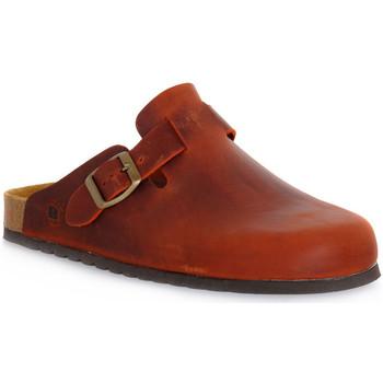 Čevlji  Cokli Bioline RUGGINE INGRASSATO Arancione