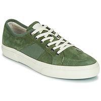 Čevlji  Moški Nizke superge Globe SURPLUS Zelena