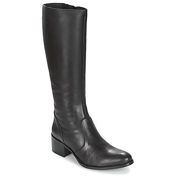 Čevlji  Ženske Mestni škornji    Betty London IROIN Črna