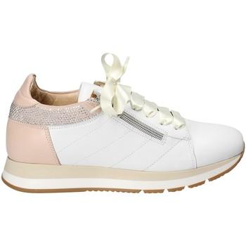 Čevlji  Ženske Nizke superge Exton E18 Biely