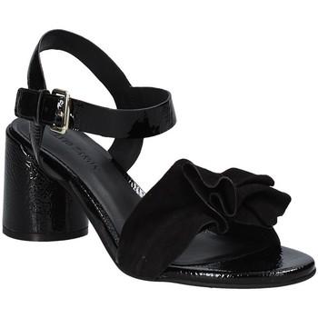 Čevlji  Ženske Sandali & Odprti čevlji Elvio Zanon EJ5605P.L Črna