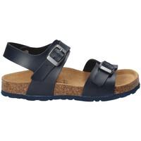 Čevlji  Otroci Sandali & Odprti čevlji Bamboo BAM-10 Modra