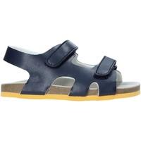 Čevlji  Otroci Sandali & Odprti čevlji Chicco 01063384000000 Modra