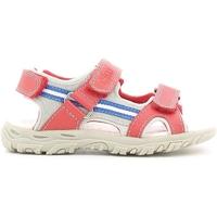 Čevlji  Otroci Sandali & Odprti čevlji Chicco 01055470 Rdeča