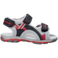 Čevlji  Otroci Sandali & Odprti čevlji U.s. Golf S19-SUK466 Modra