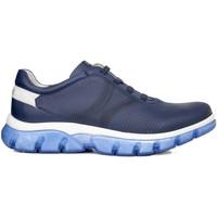 Čevlji  Moški Nizke superge CallagHan 42700 Modra