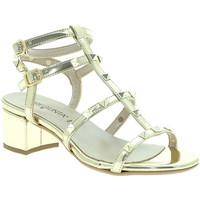Čevlji  Ženske Sandali & Odprti čevlji Pregunta IL68085-BB Drugi